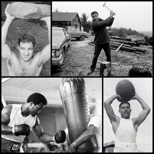 Punching Power - Marciano - Ali - Foreman - Louis
