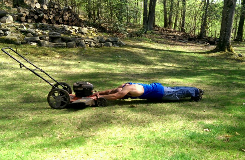 Lawnmower Standing Rollouts