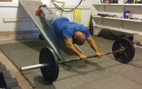 Pushup Ab Rollout Combination